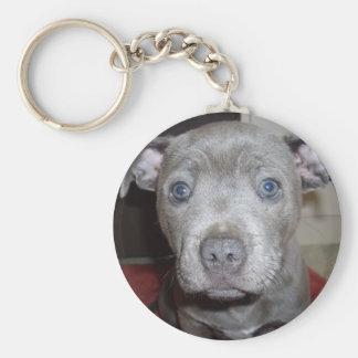 Porte-clés Chiot bleu de bull-terrier du Staffordshire,