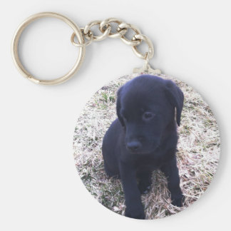 Porte-clés Chiot noir de labrador retriever