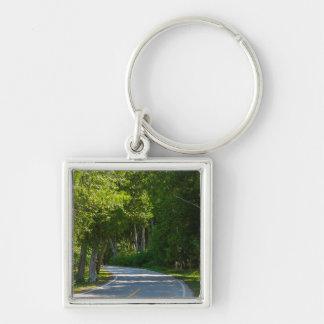 Porte-clés Commande de rivage de lac Mackinac