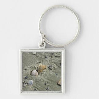 Porte-clés Coquillages et sable