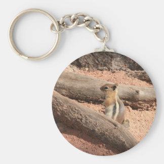 Porte-clés Écureuil moulu du Colorado