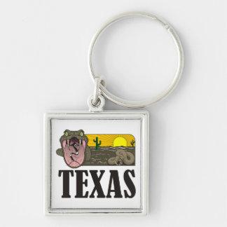 Porte-clés État de serpent du Texas, Etats-Unis : Serpent à