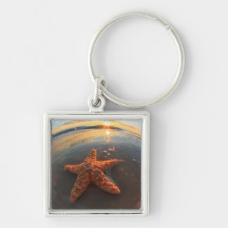 Porte-clés Étoiles de mer et bulles au coucher du soleil