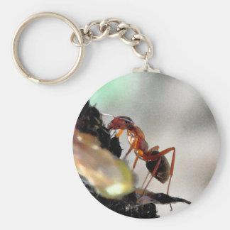 Porte-clés fourmi g
