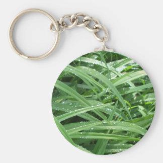 Porte-clés Gouttes de pluie sur le feuille vert