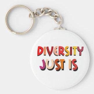 Porte-clés La diversité juste est porte - clé (de blanc)