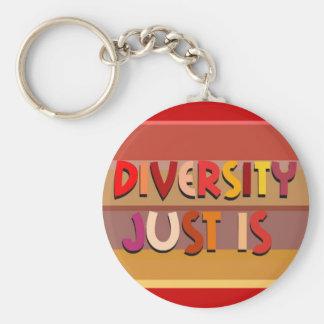 Porte-clés La diversité juste est porte - clé (de rayures)