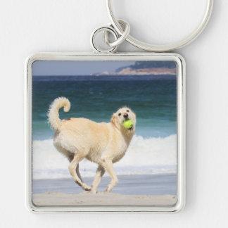 Porte-clés Labradoodle - jour heureux sur la plage
