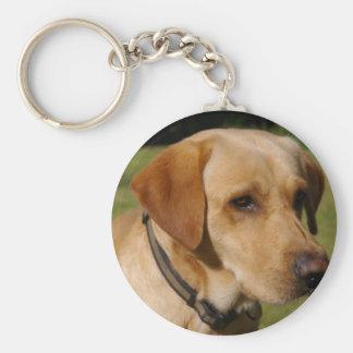 Porte-clés Labrador d'or