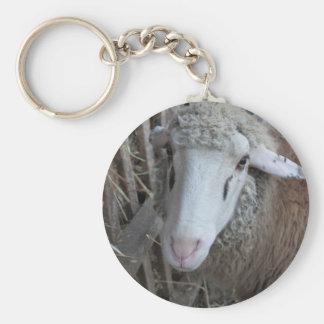 Porte-clés Moutons avec le foin