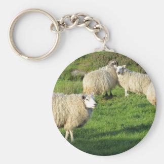Porte-clés Moutons irlandais