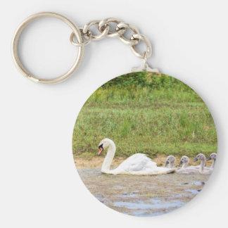 Porte-clés Natation blanche de cygne de mère en conformité