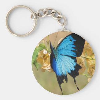 Porte-clés Papillon d'Ulysse
