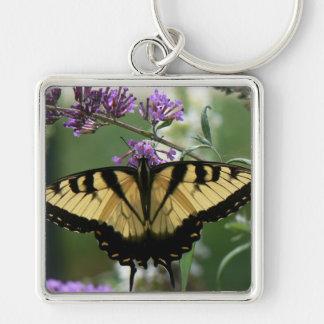 """Porte-clés Papillon - grand (2,00"""") porte - clé de carré de"""