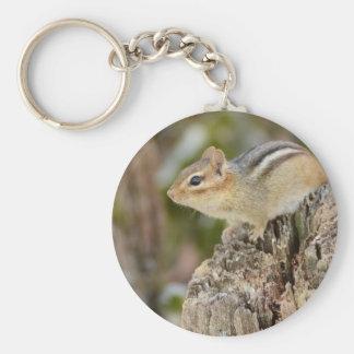 Porte-clés Petite tamia mignonne se reposant sur un tronçon