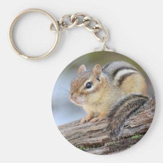 Porte-clés Petite tamia simplement adorable
