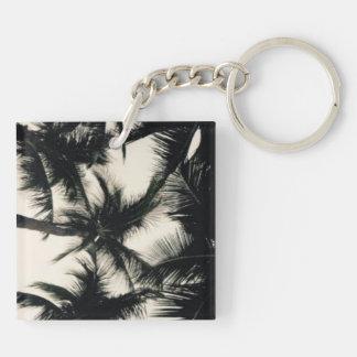 Porte-clés Photographie de palmier