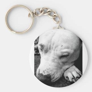 Porte-clés pitbull de blanc de chien de cicatrice de Harry