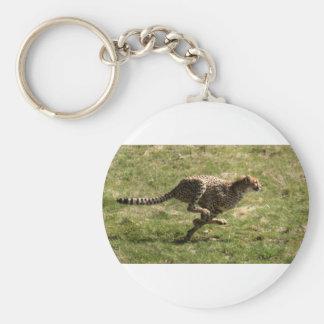 Porte-clés Plein galop de guépard (Acinonyx_jubatus)