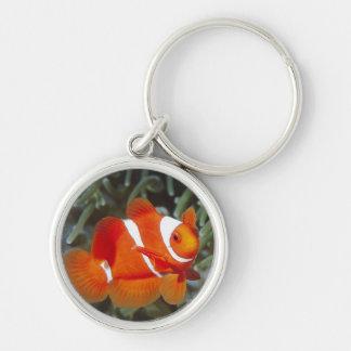 Porte-clés poissons de nemo