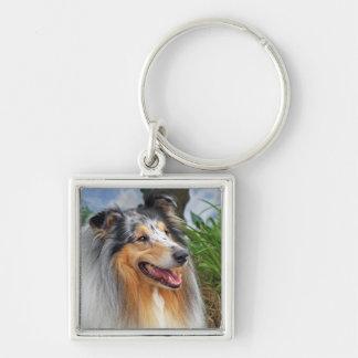 Porte-clés Porte - clé bleu de merle de beau chien de colley,
