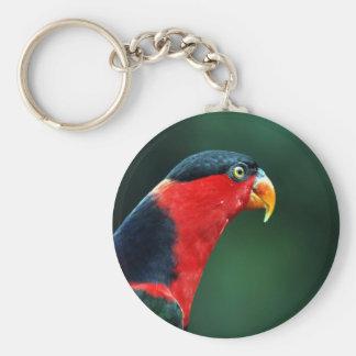 Porte-clés Porte - clé coloré d'oiseau