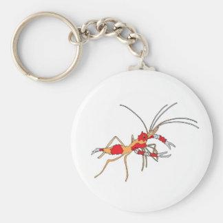 Porte-clés porte - clé de crevette d'ekos