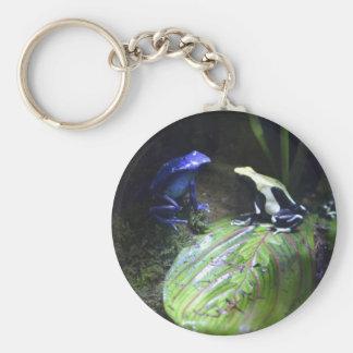 Porte-clés Porte - clé de grenouilles de dard de poison