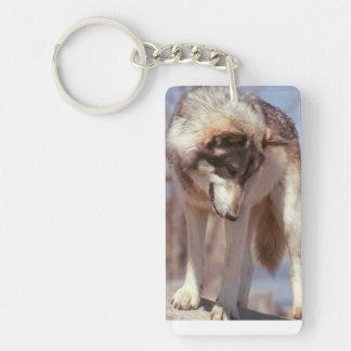 Porte-clés Porte - clé de loup