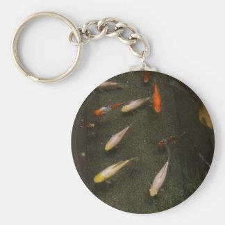 Porte-clés Porte - clé de Nishikigoi (poisson de Koi)