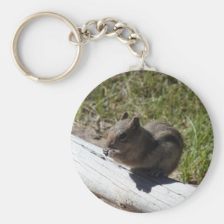 Porte-clés Porte - clé de parc national de montagne rocheuse