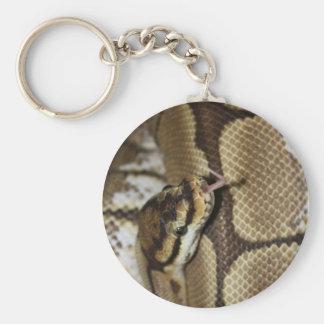 Porte-clés Porte - clé de python de boule d'araignée