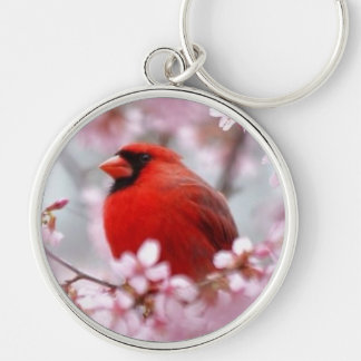 Porte-clés Porte - clé de Redbird