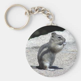 Porte-clés Porte - clé de tamia