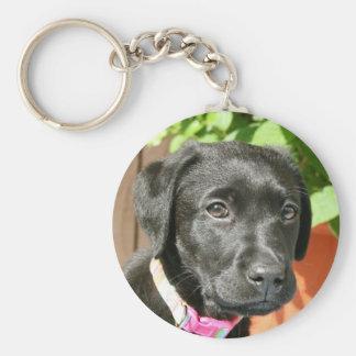 Porte-clés Porte - clé noir de Labrador