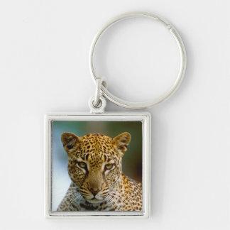 Porte-clés Portrait de léopard