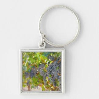 Porte-clés Raisins sur la vigne prête à faire le vin