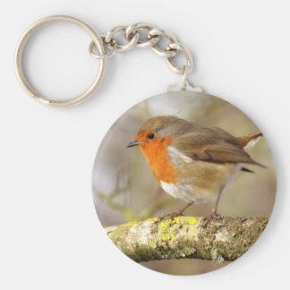 Porte-clés Robin