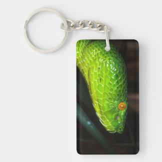 Porte-clés Serpent de vipère de la mine de Stejneger vert