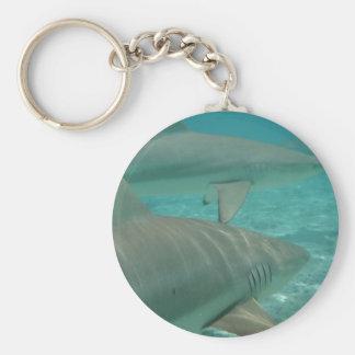 Porte-clés shark