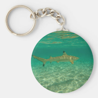 Porte-clés Shark in bora bora