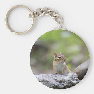 Porte-clés Tamia sur une roche