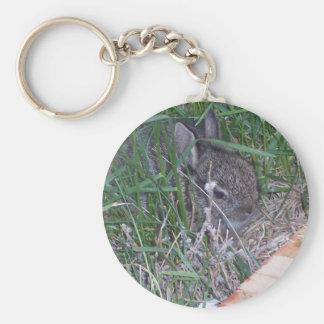 Porte-clés Trouvez le lapin