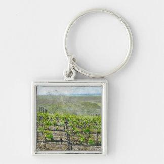 Porte-clés Vignoble dans Napa Valley la Californie