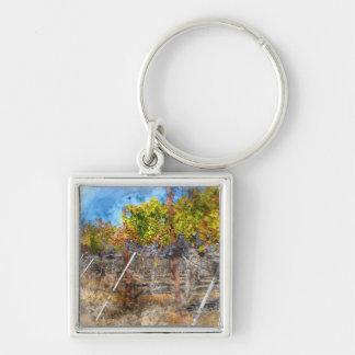 Porte-clés Vignoble en automne dans Napa Valley la Californie