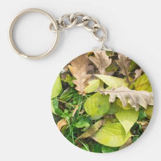 Porte-clés Vue en gros plan sur le feuille d'automne tombé