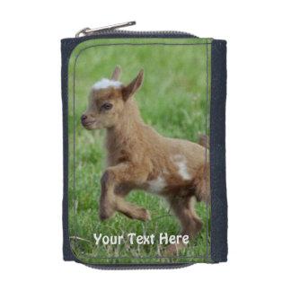Portefeuille pygméen de photo de chèvre de bébé
