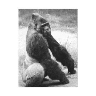 Portrait animal noir et blanc de toile de zoo de