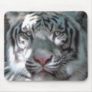 Portrait blanc de tigre tapis de souris