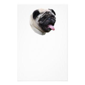 Portrait de photo de chien de carlin prospectus